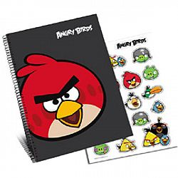 Disney Blok a samolepky Angry Birds