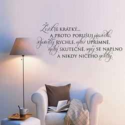 Housedecor Samolepka na stenu - Život je krátky na to, aby ...